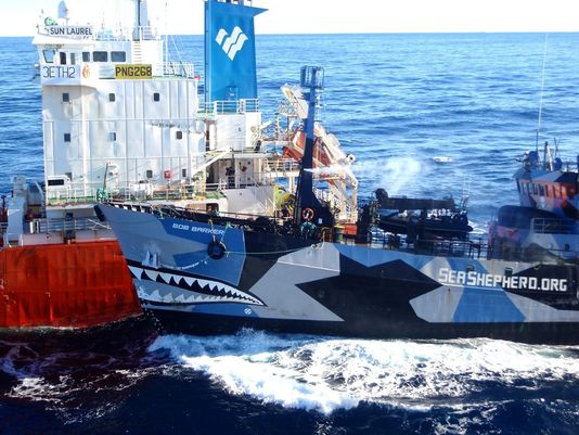 Sea Shepherd Ship Bob Barker