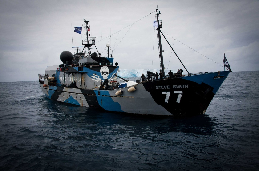 Sea Shepherd Steve Irwin 2